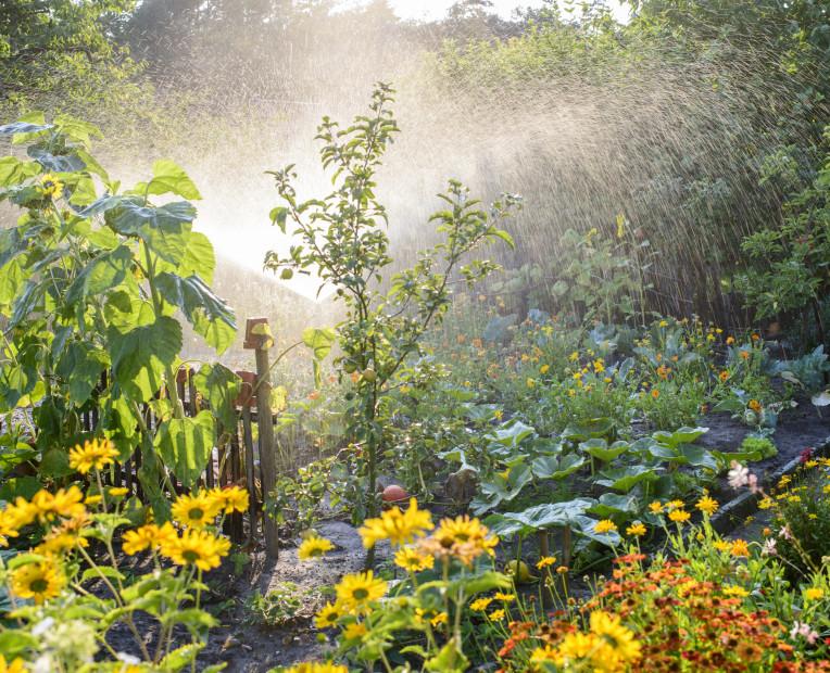 Lieber Garten